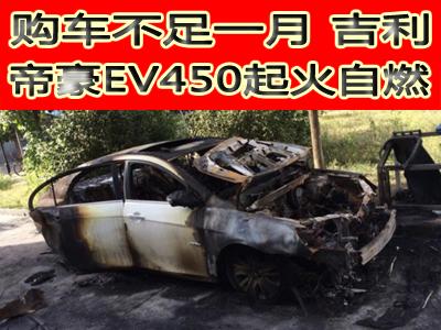 购车不足一月 吉利帝豪EV450起火自燃